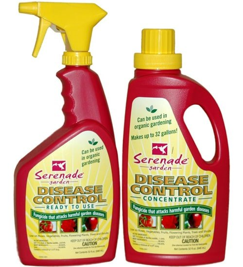 Serenade Garden Disease Control Planet Natural