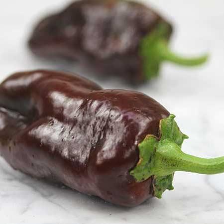 Pepper, Sweet Chocolate
