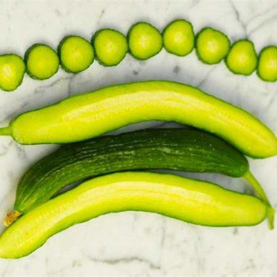 Cucumber, Telegraph Improved
