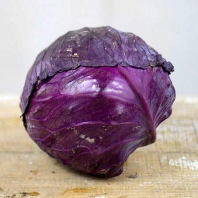 Tete Noire Cabbage