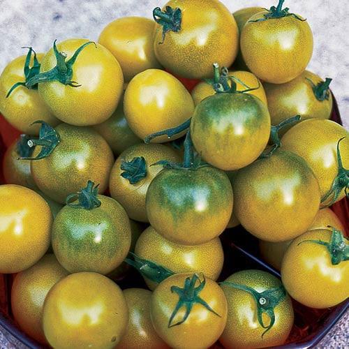 Tomato, Green Grape