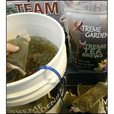 Xtreme Tea Brews