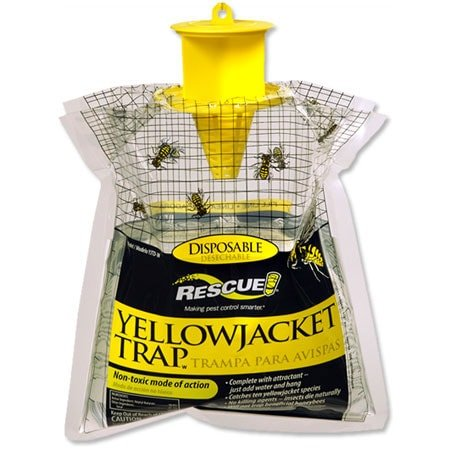 Disposable Yellow Jacket Trap