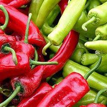 Starting Pepper Seeds Indoors | Planet Natural