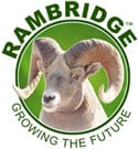 Rambridge Wholesale Supply
