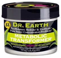 Metabolic Transformer