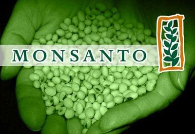 Monsanto Seed