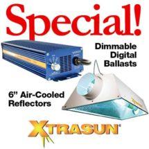 XtraSun Special