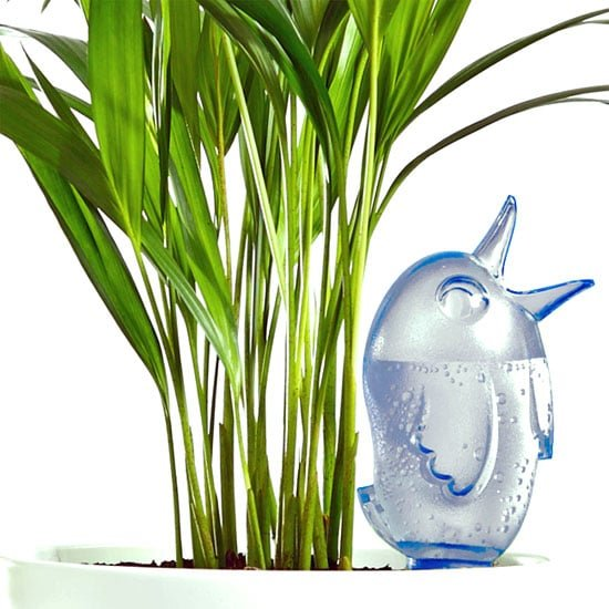 Plant Waterer