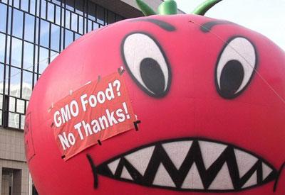GMO Trade Talks