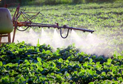 Applying Herbicides