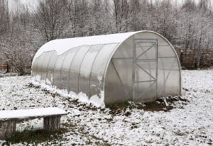 winter-greenhouse