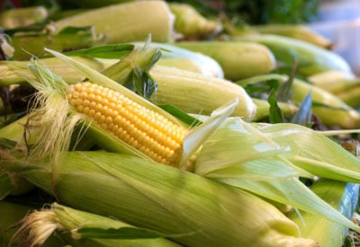Market Sweet Corn