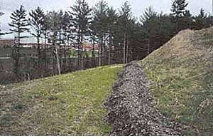 Compost Berm