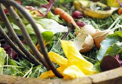 Composting Problems