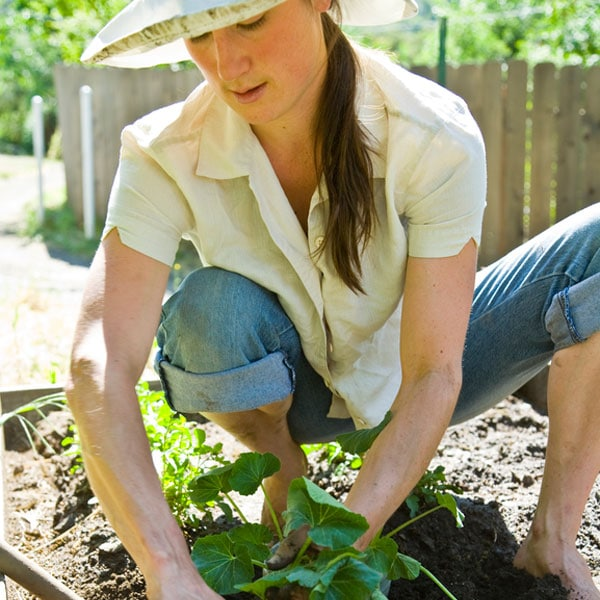 Growing & Gardening Tips