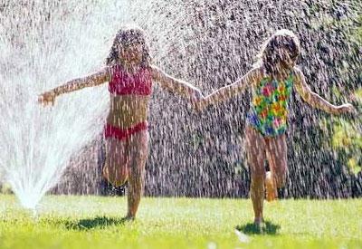 Summer Lawn Fun