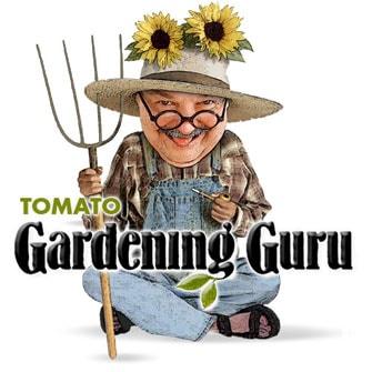 Tomato Gardening Guru