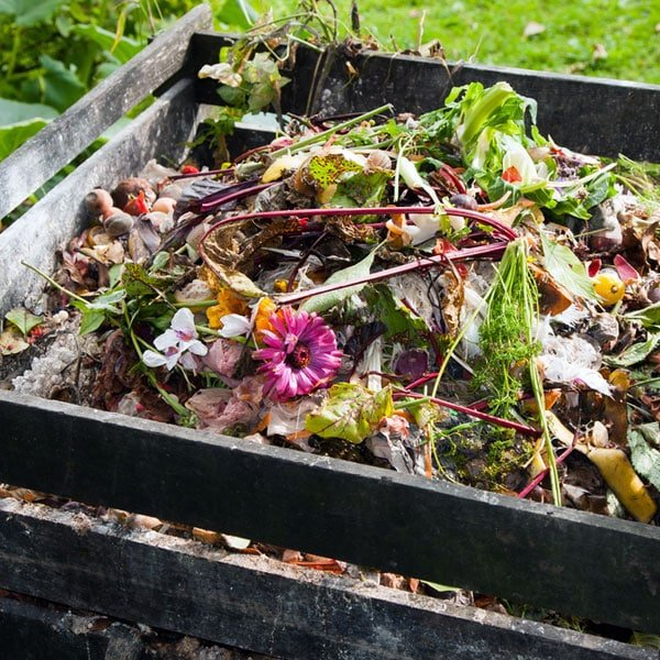 Benefits Of Composting At Home Planet Natural
