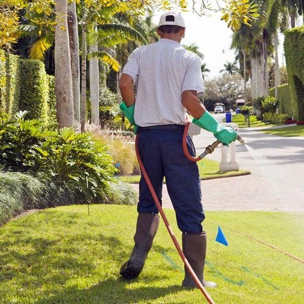 Lawn Spraying Service