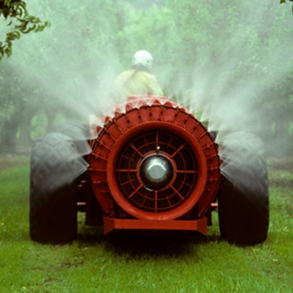 Applying Pesticide Spray
