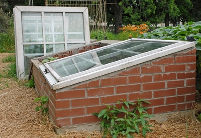 gardening food to cold got tinhatranch organic more grow with coldframe frame garden space consider little frames a