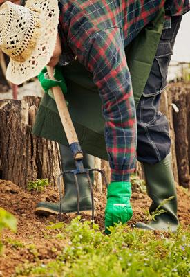 Preparing Garden Soil