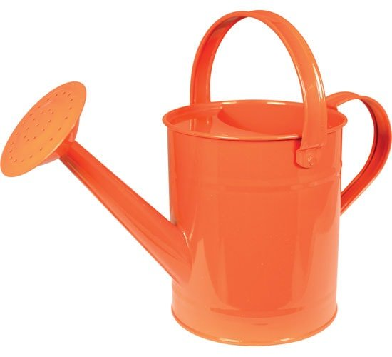 Metal Watering Can For Kids Planet Natural