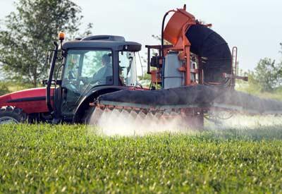 Spraying Weeds