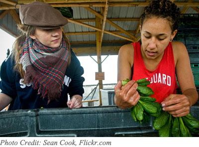 Organic Farm Workers
