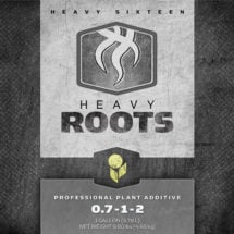 HEAVY 16 Roots