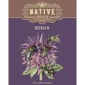 Bee Balm Seed Pack