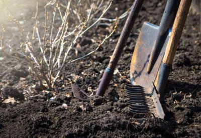 5 must have gardening tools planet natural for Gardening tools you need
