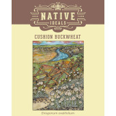 cushion-buckwheat-pack
