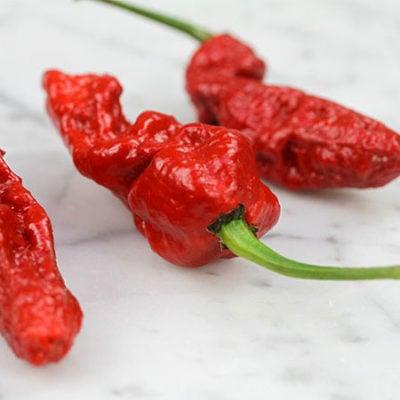 Ghost Pepper (Bhut Jolokia)