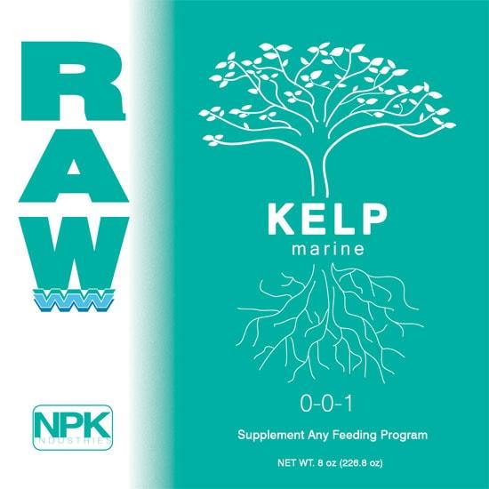 RAW Kelp (Marine)