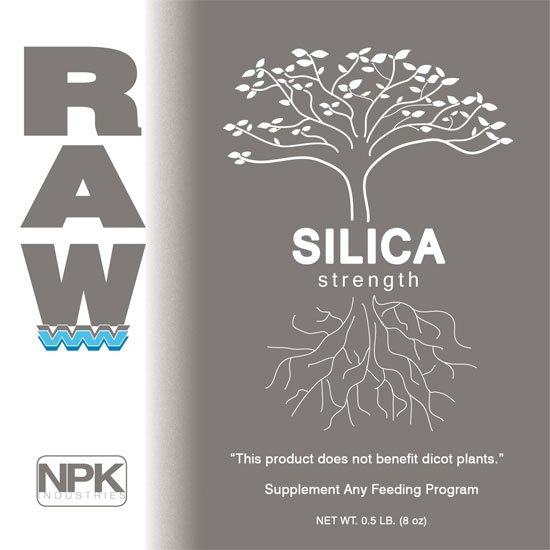 Image result for raw silica