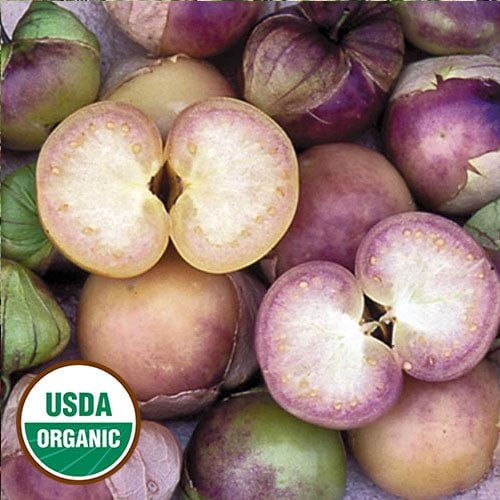 Tomatillo Seeds, Purple