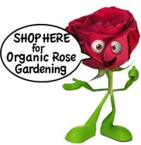 Rose Gardening