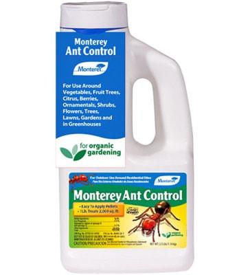 Monterey Ant Control
