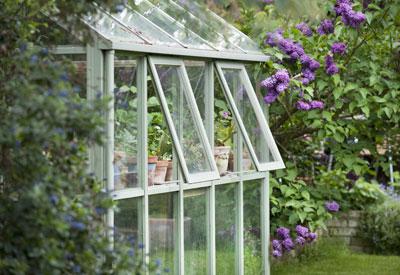 Backyard Greenhouse