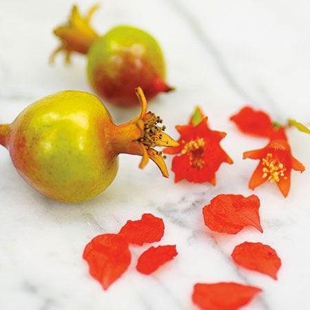 Orange Master Pomegranate