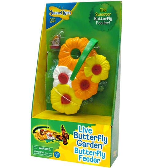 Insect Lore Butterfly Feeder Deluxe