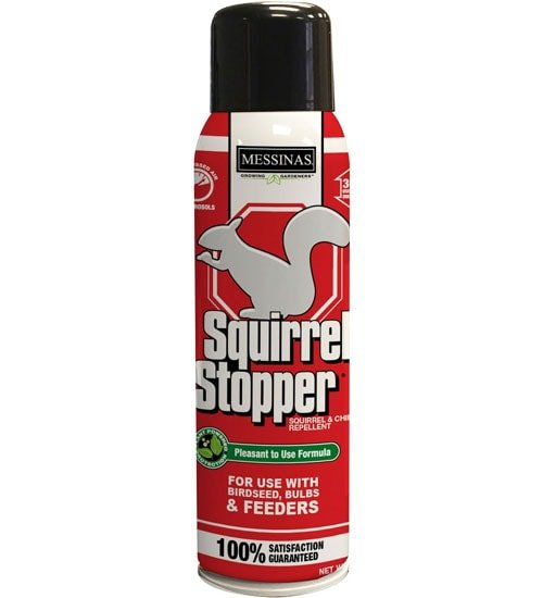 Squirrel Stopper