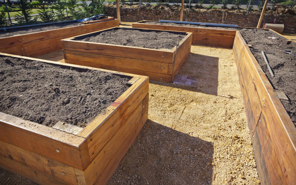 Wooden Raised Vegetable Beds