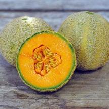 Melon, Honey Rock