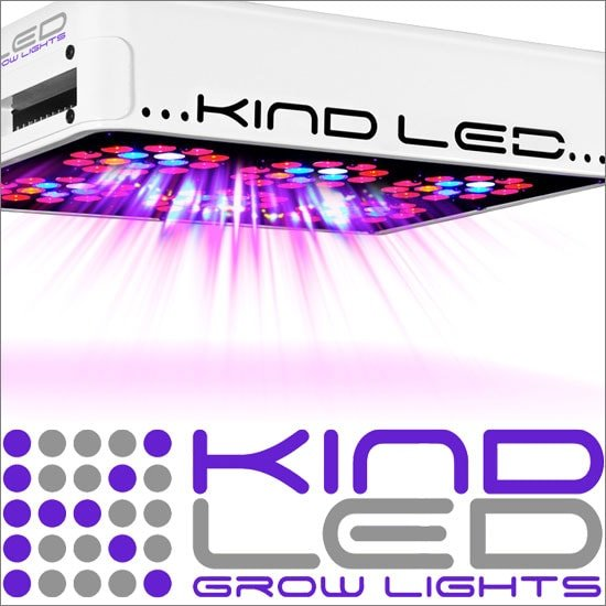 Kind L300 LED Grow Light