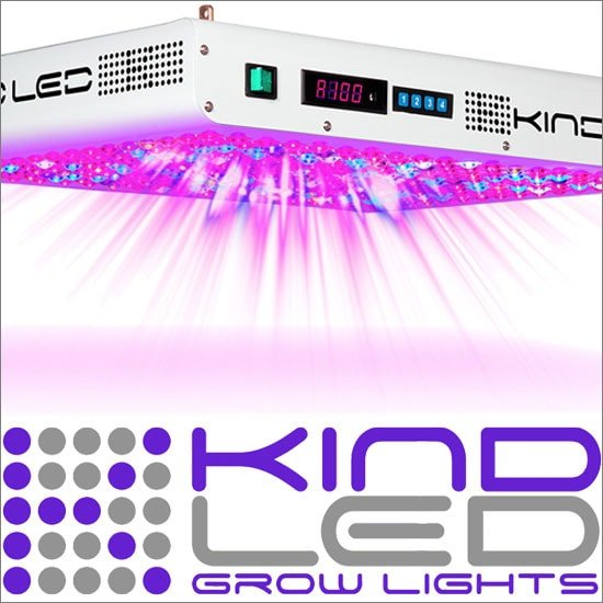 Kind XL 1000 LED Grow Light