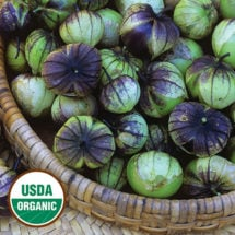 Purple de Milpa Tomatillo