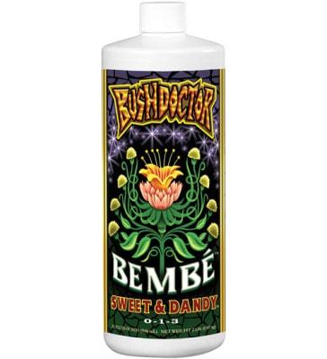 Bush Doctor Bembé